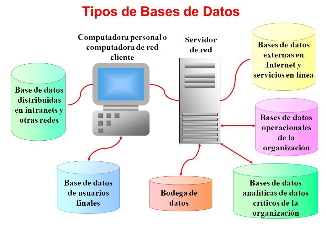 Tipos de Bases de Datos Bases de datos externas en Internet y servicios en línea. Computadora personal o computadora de red cliente.