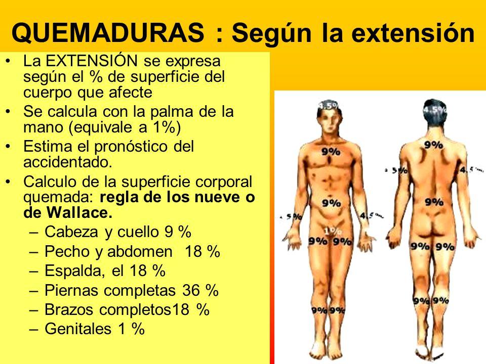 QUEMADURAS : Según la extensión