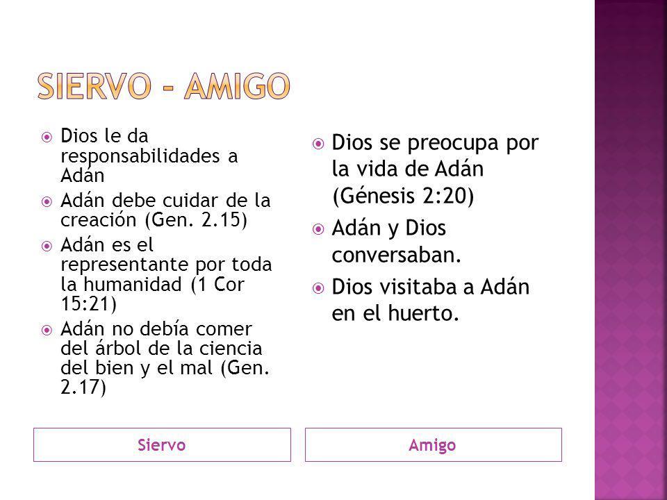 Siervo - amigo Dios se preocupa por la vida de Adán (Génesis 2:20)