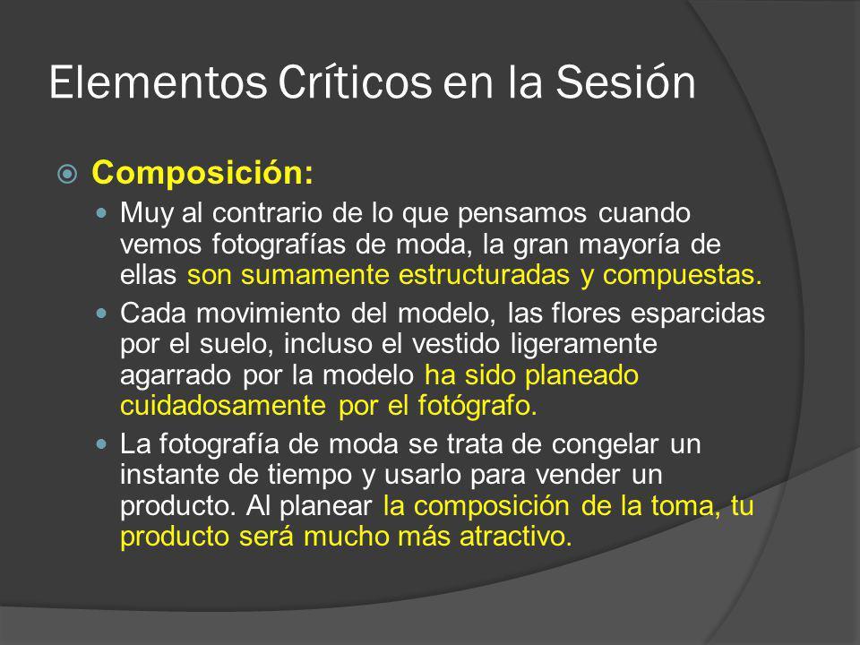 Elementos Críticos en la Sesión