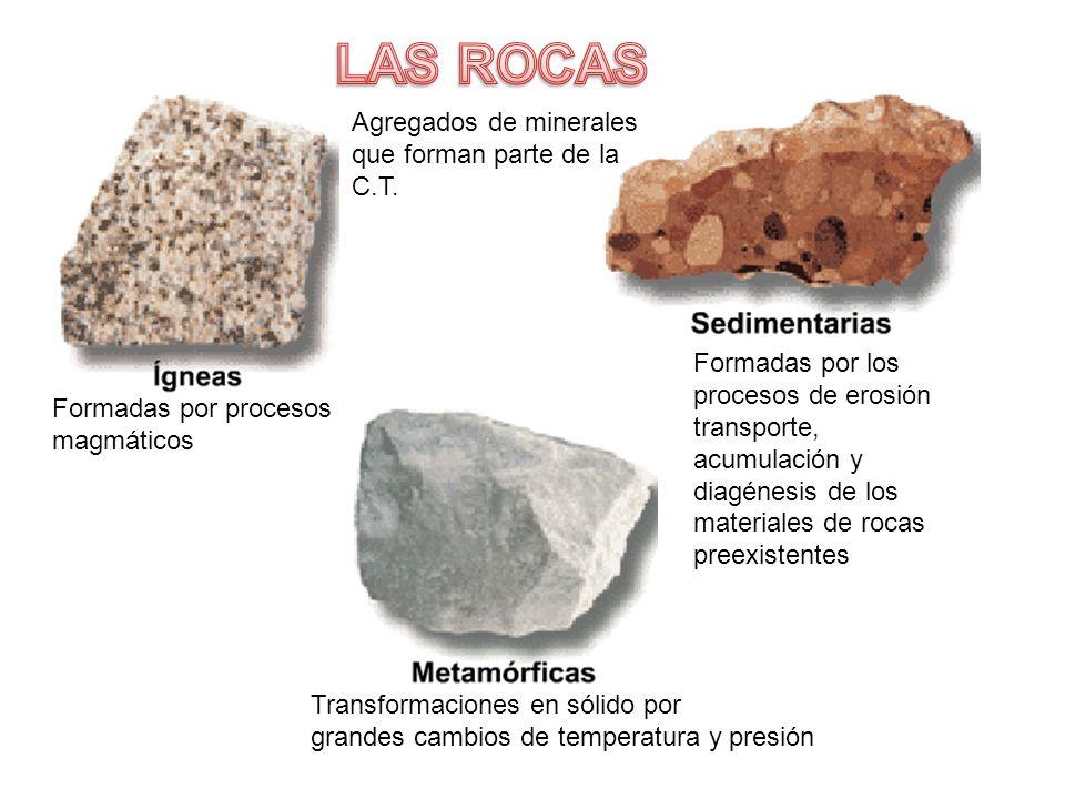 LAS ROCAS Agregados de minerales que forman parte de la C.T.