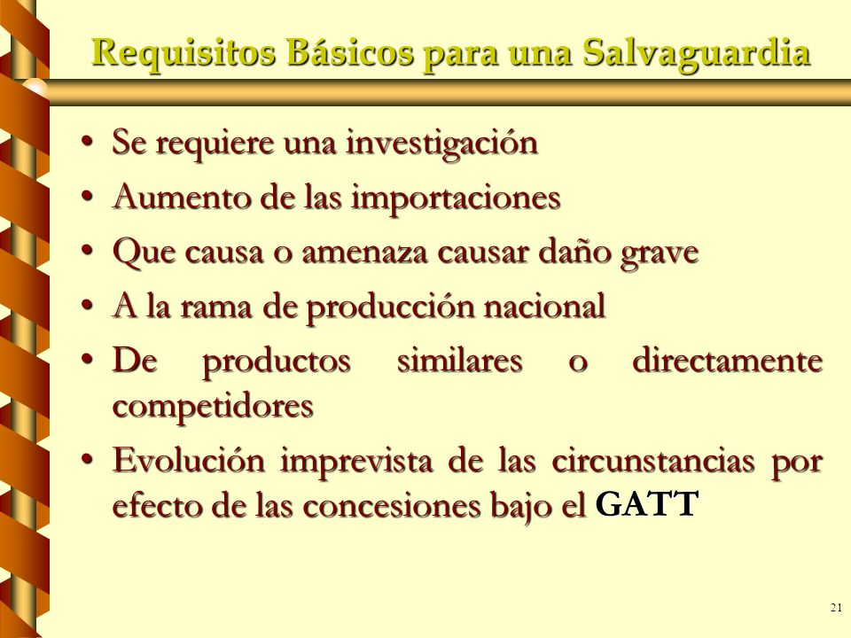 Requisitos Básicos para una Salvaguardia