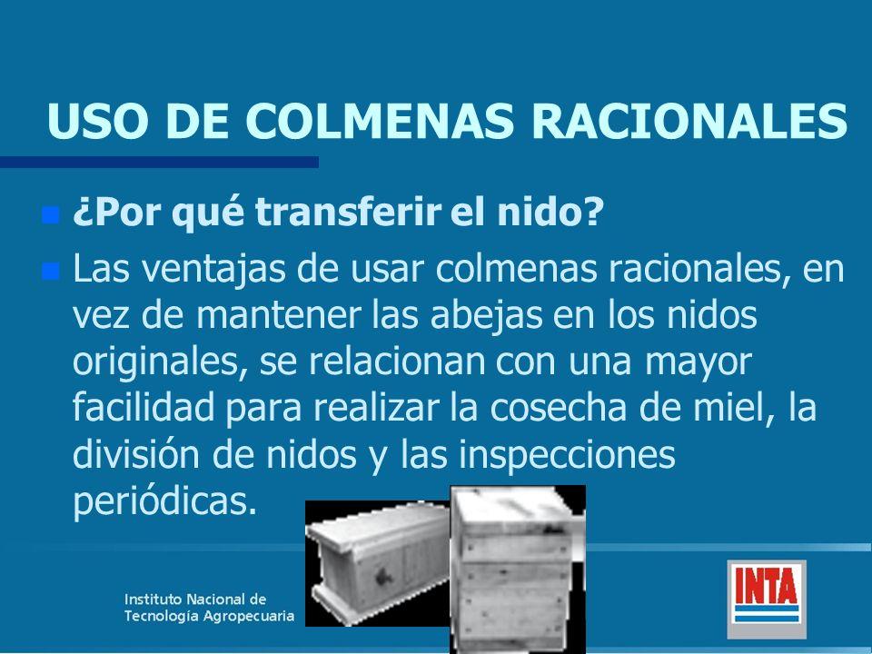 USO DE COLMENAS RACIONALES