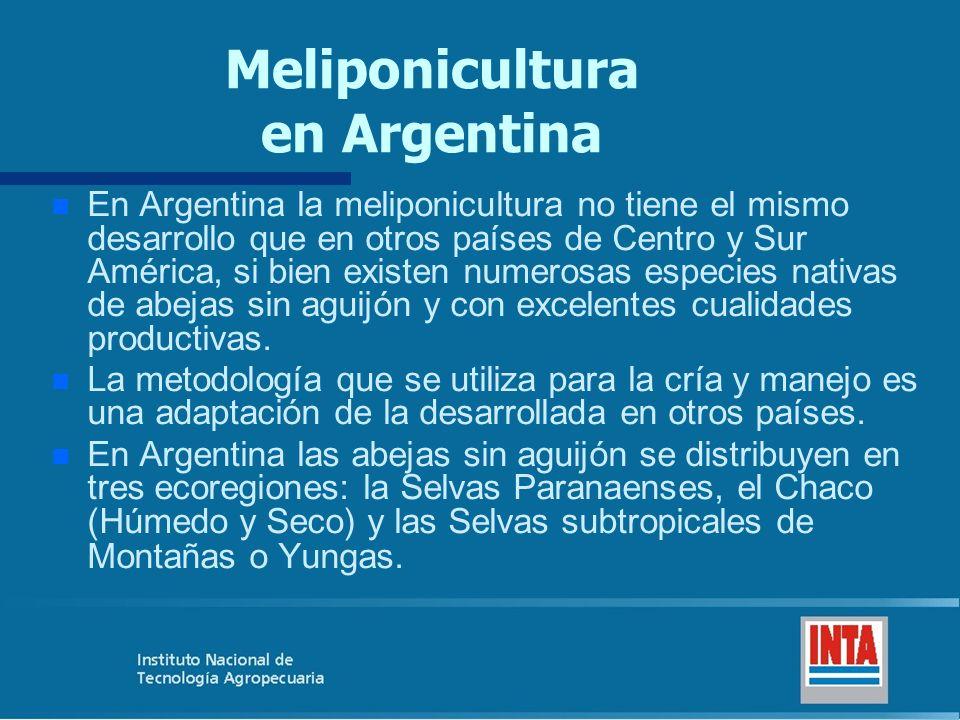 Meliponicultura en Argentina