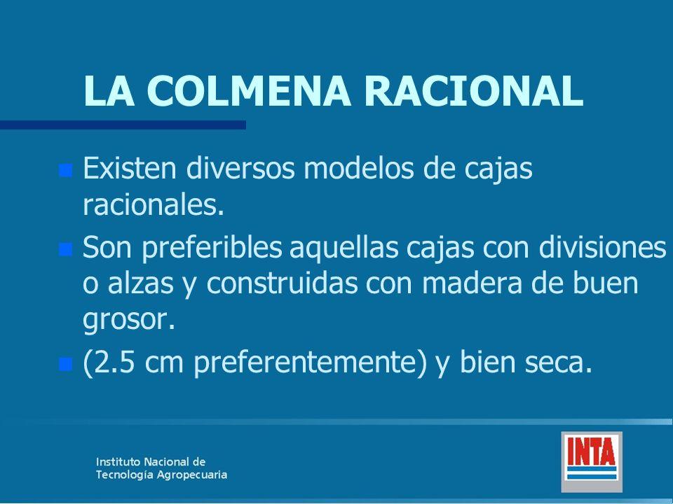 LA COLMENA RACIONAL Existen diversos modelos de cajas racionales.