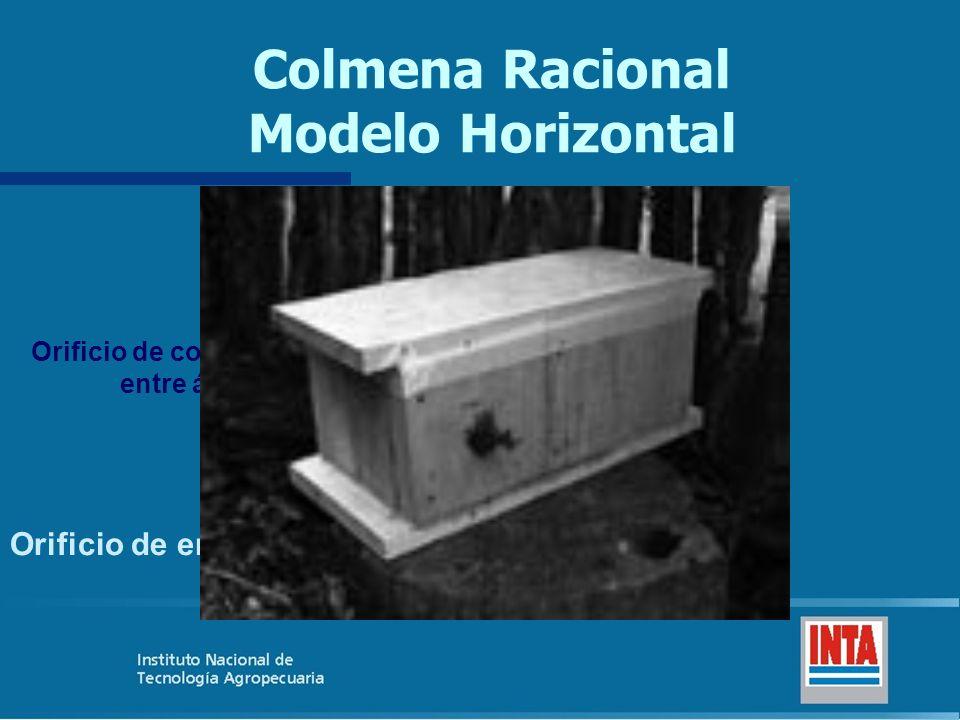 Colmena Racional Modelo Horizontal