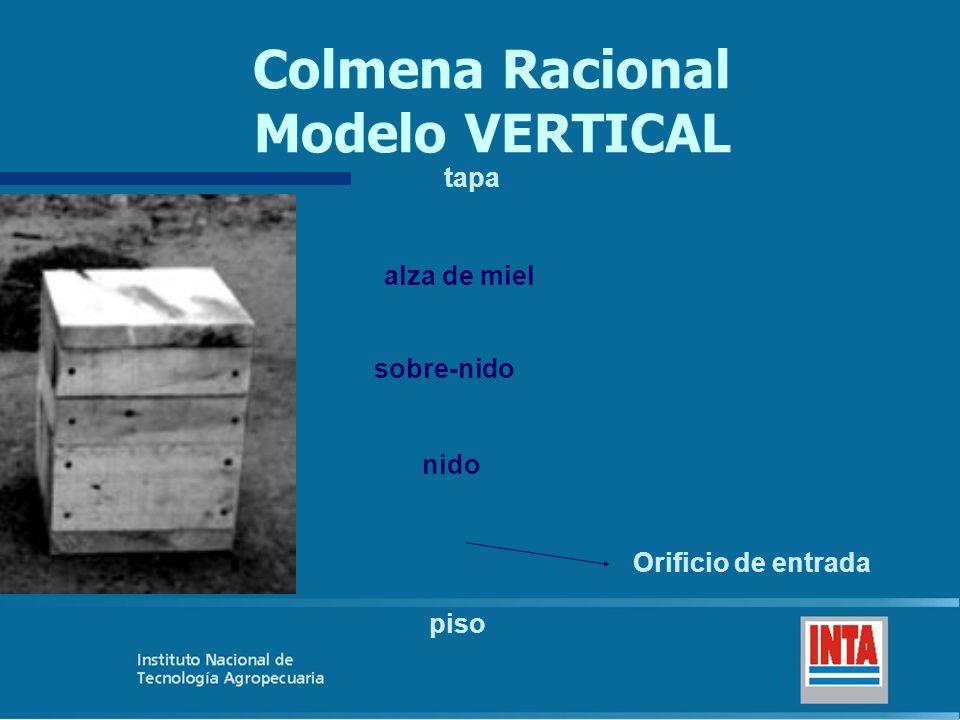 Colmena Racional Modelo VERTICAL