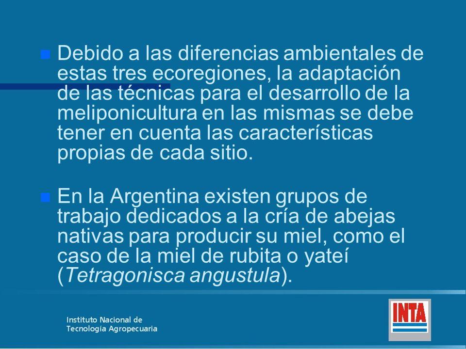Debido a las diferencias ambientales de estas tres ecoregiones, la adaptación de las técnicas para el desarrollo de la meliponicultura en las mismas se debe tener en cuenta las características propias de cada sitio.