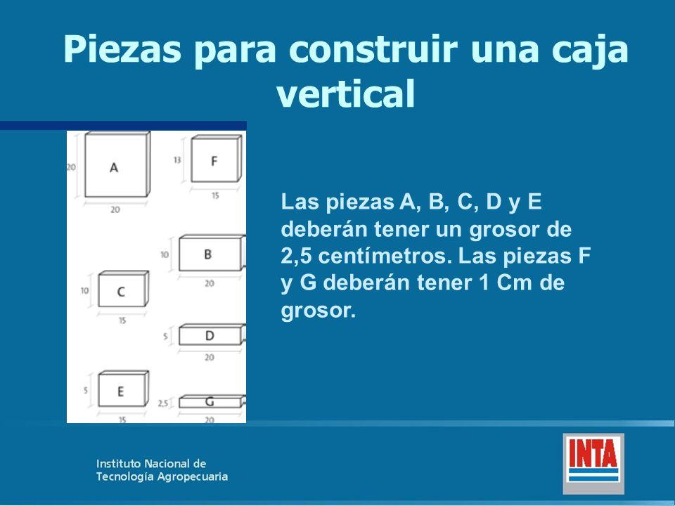 Piezas para construir una caja vertical
