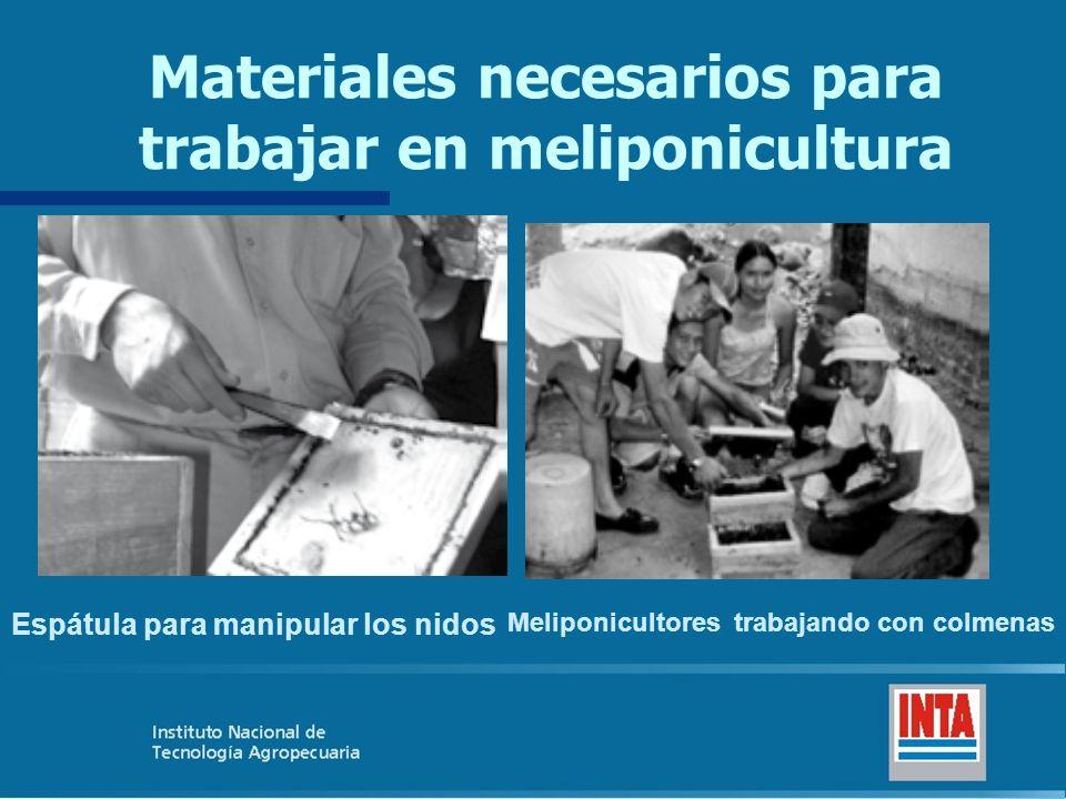 Materiales necesarios para trabajar en meliponicultura