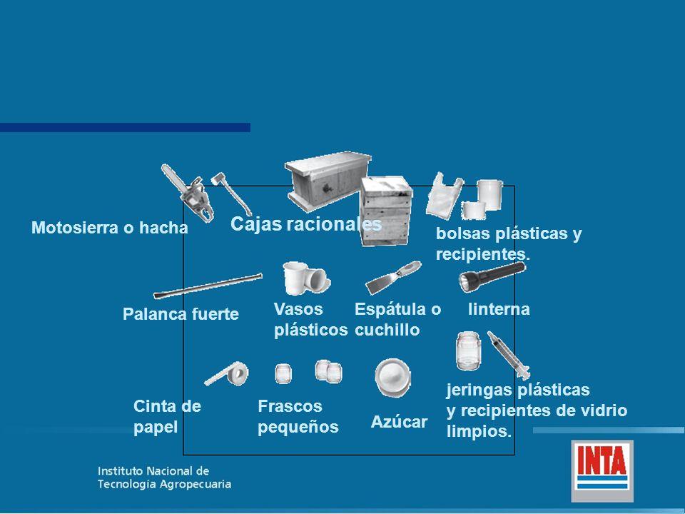 Cajas racionales Motosierra o hacha bolsas plásticas y recipientes.