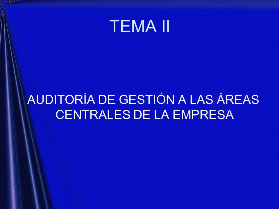 AUDITORÍA DE GESTIÓN A LAS ÁREAS CENTRALES DE LA EMPRESA
