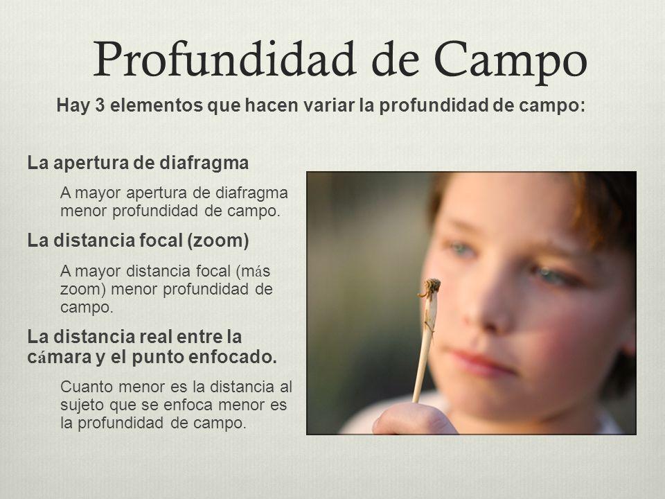 Profundidad de Campo Hay 3 elementos que hacen variar la profundidad de campo: La apertura de diafragma.