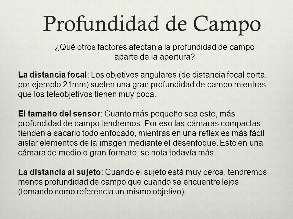 Profundidad de Campo ¿Qué otros factores afectan a la profundidad de campo aparte de la apertura