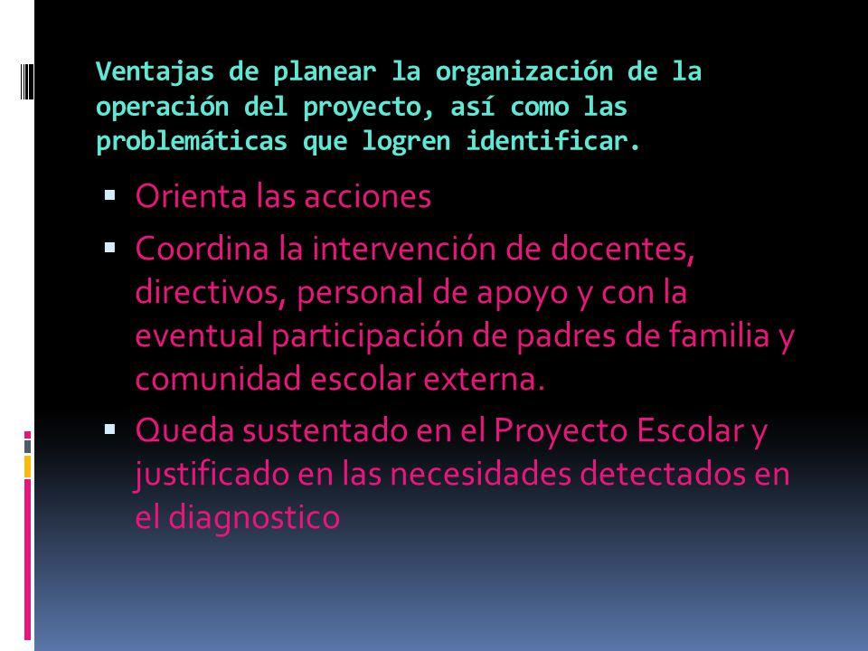Ventajas de planear la organización de la operación del proyecto, así como las problemáticas que logren identificar.