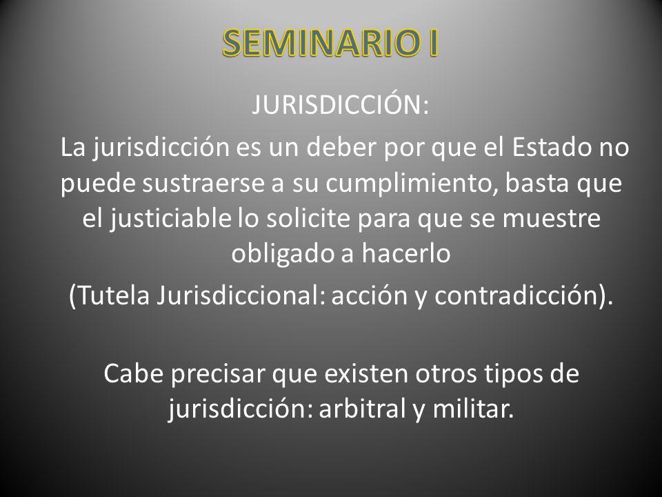 (Tutela Jurisdiccional: acción y contradicción).
