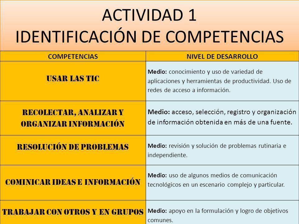 ACTIVIDAD 1 IDENTIFICACIÓN DE COMPETENCIAS