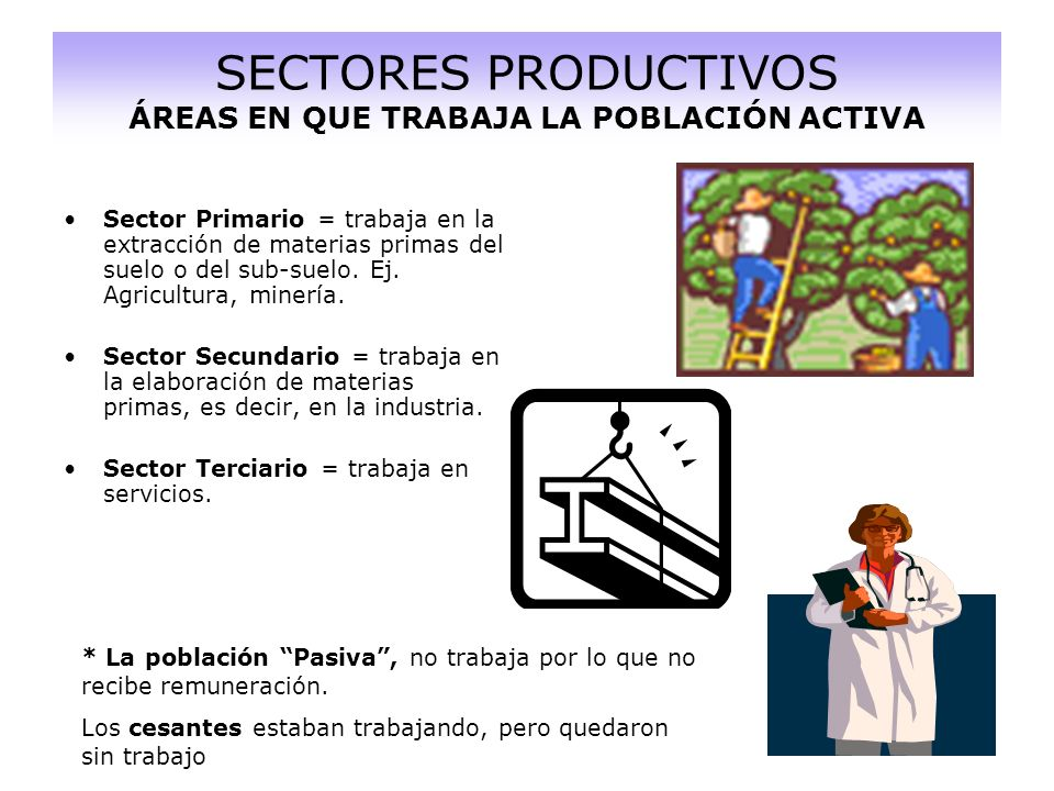SECTORES PRODUCTIVOS ÁREAS EN QUE TRABAJA LA POBLACIÓN ACTIVA