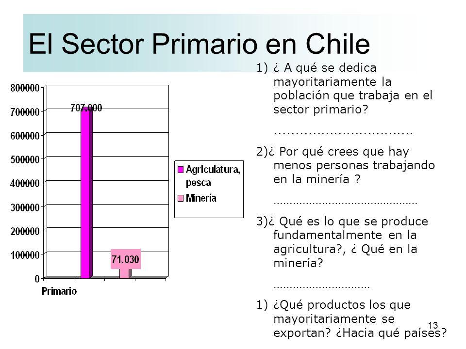 El Sector Primario en Chile