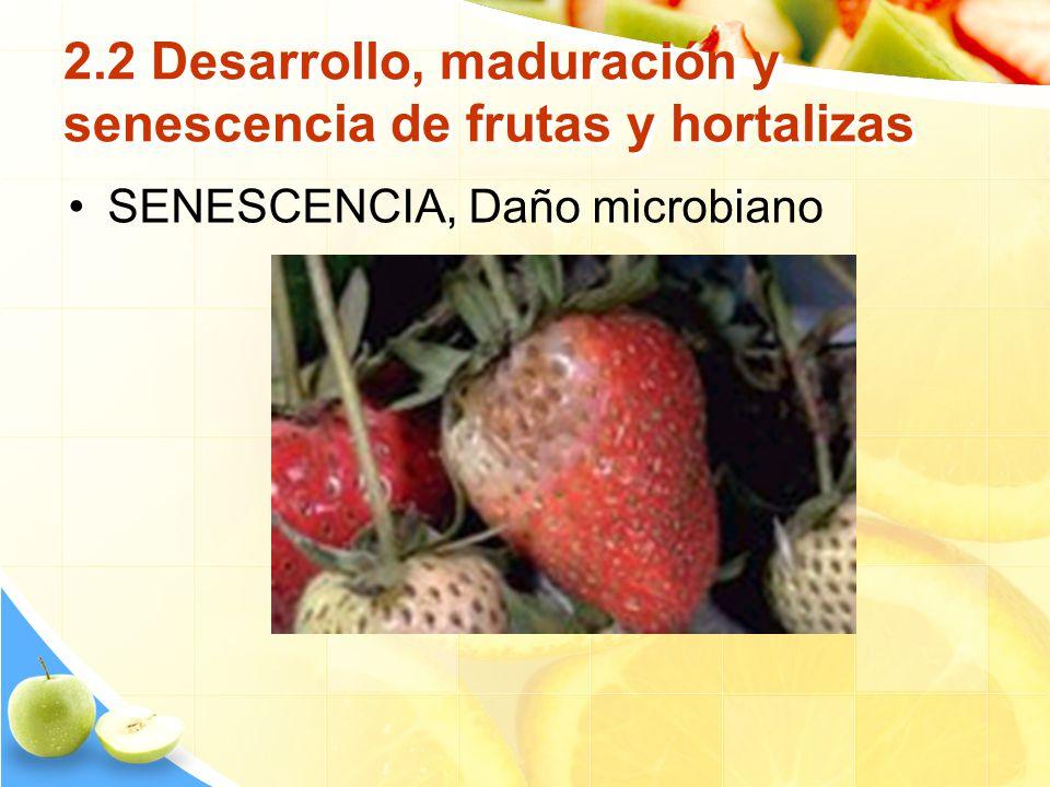 2.2 Desarrollo, maduración y senescencia de frutas y hortalizas