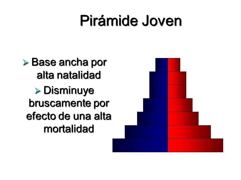 Pirámide Joven Base ancha por alta natalidad
