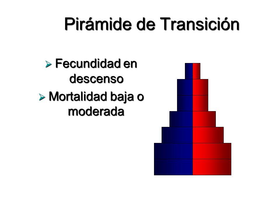 Pirámide de Transición