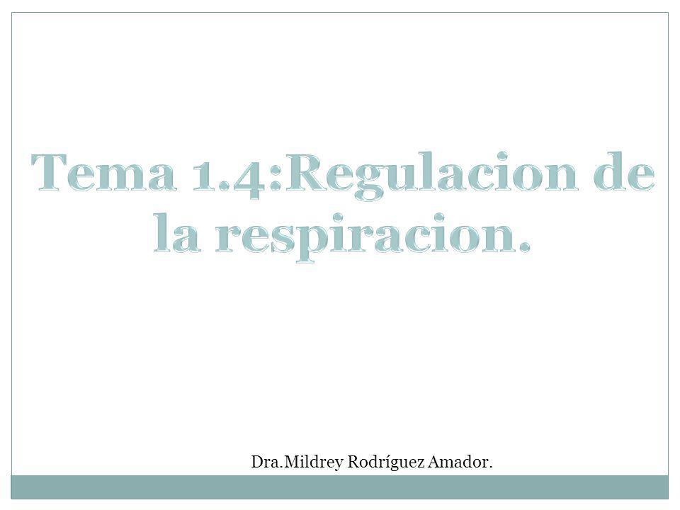 Tema 1.4:Regulacion de la respiracion.