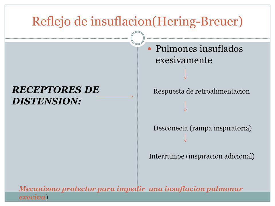 Reflejo de insuflacion(Hering-Breuer)
