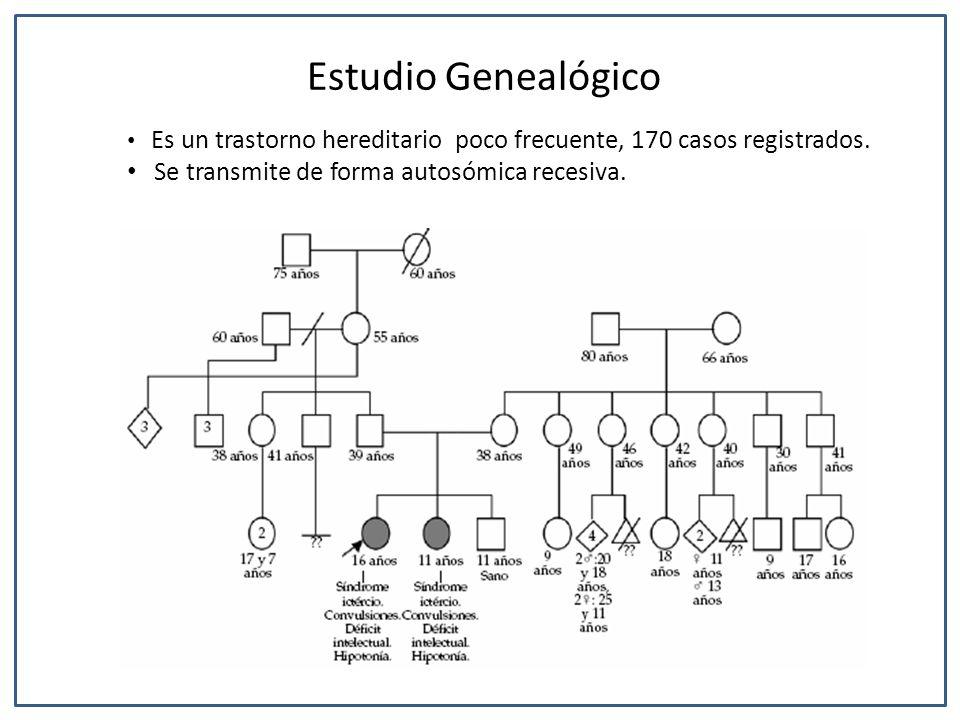 Estudio Genealógico Se transmite de forma autosómica recesiva.