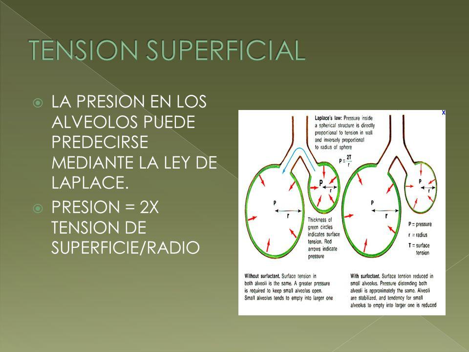 TENSION SUPERFICIAL LA PRESION EN LOS ALVEOLOS PUEDE PREDECIRSE MEDIANTE LA LEY DE LAPLACE.