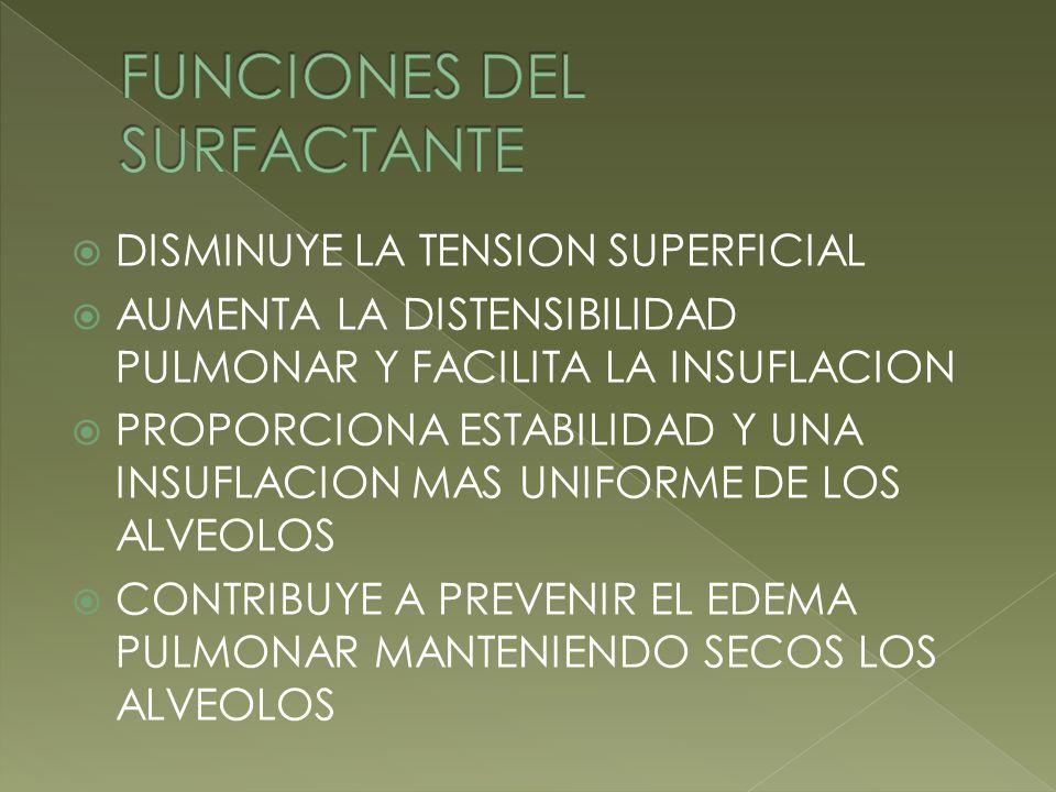 FUNCIONES DEL SURFACTANTE