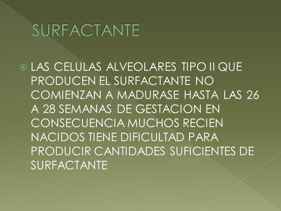 SURFACTANTE