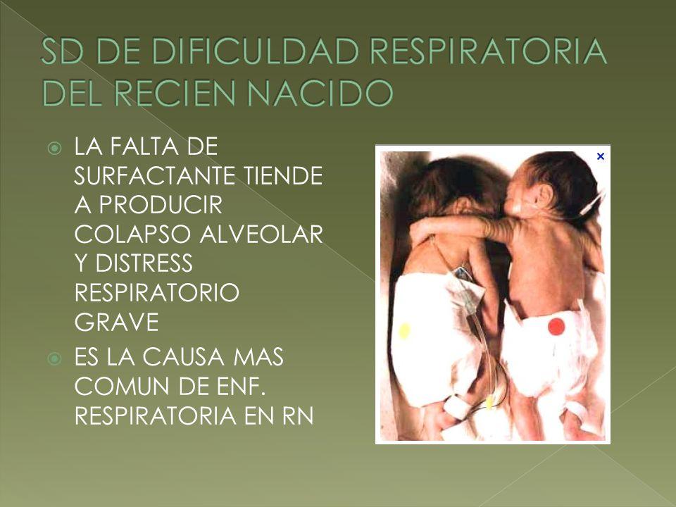 SD DE DIFICULDAD RESPIRATORIA DEL RECIEN NACIDO