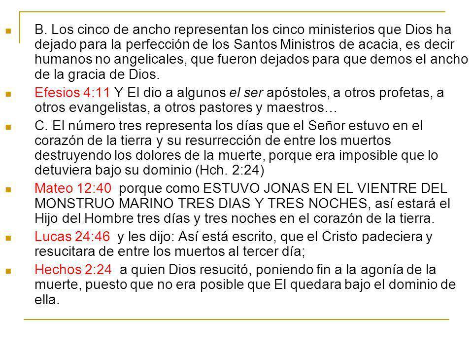 B. Los cinco de ancho representan los cinco ministerios que Dios ha dejado para la perfección de los Santos Ministros de acacia, es decir humanos no angelicales, que fueron dejados para que demos el ancho de la gracia de Dios.