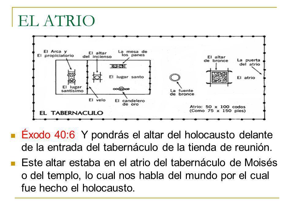 EL ATRIOÉxodo 40:6 Y pondrás el altar del holocausto delante de la entrada del tabernáculo de la tienda de reunión.
