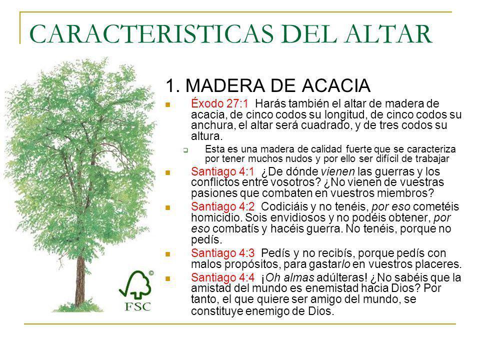 CARACTERISTICAS DEL ALTAR