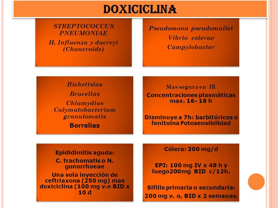 DOXICICLINA STREPTOCOCCUS PNEUMONIAE Pseudomona pseudomallei
