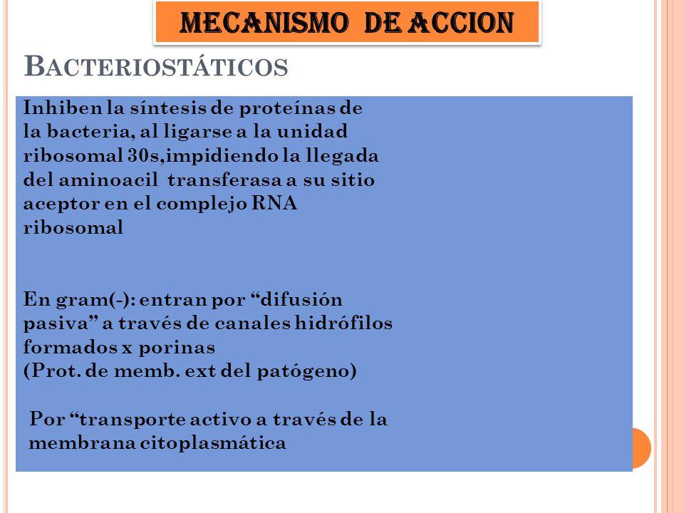 MECANISMO DE ACCION Bacteriostáticos