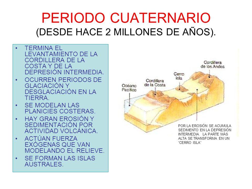 PERIODO CUATERNARIO (DESDE HACE 2 MILLONES DE AÑOS).