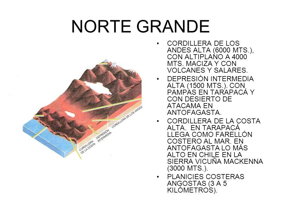 NORTE GRANDE CORDILLERA DE LOS ANDES ALTA (6000 MTS.), CON ALTIPLANO A 4000 MTS. MACIZA Y CON VOLCANES Y SALARES.