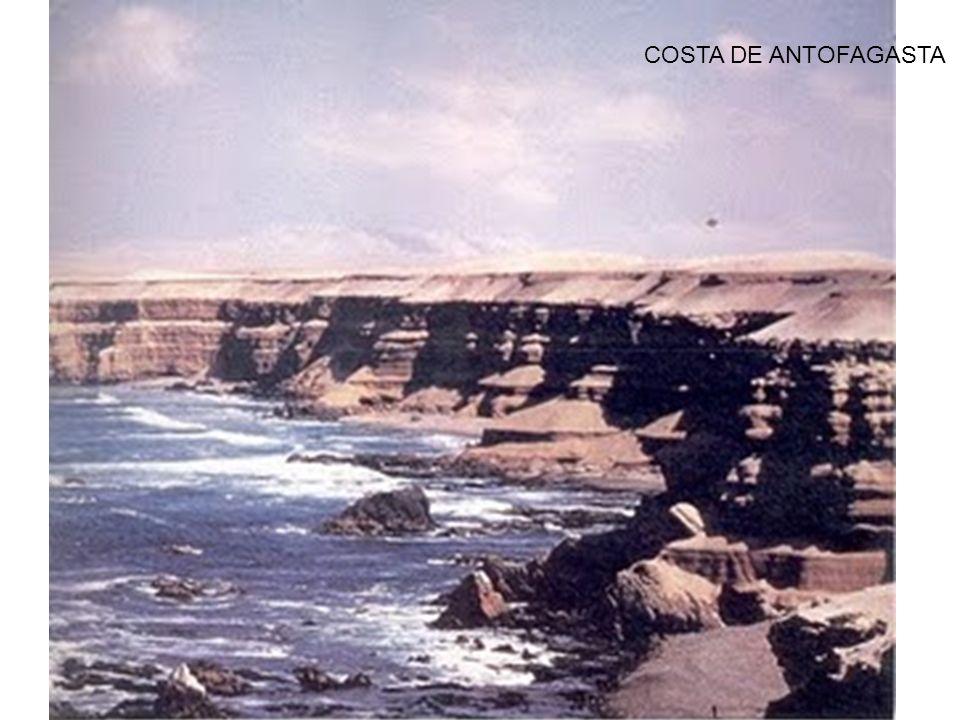COSTA DE ANTOFAGASTA