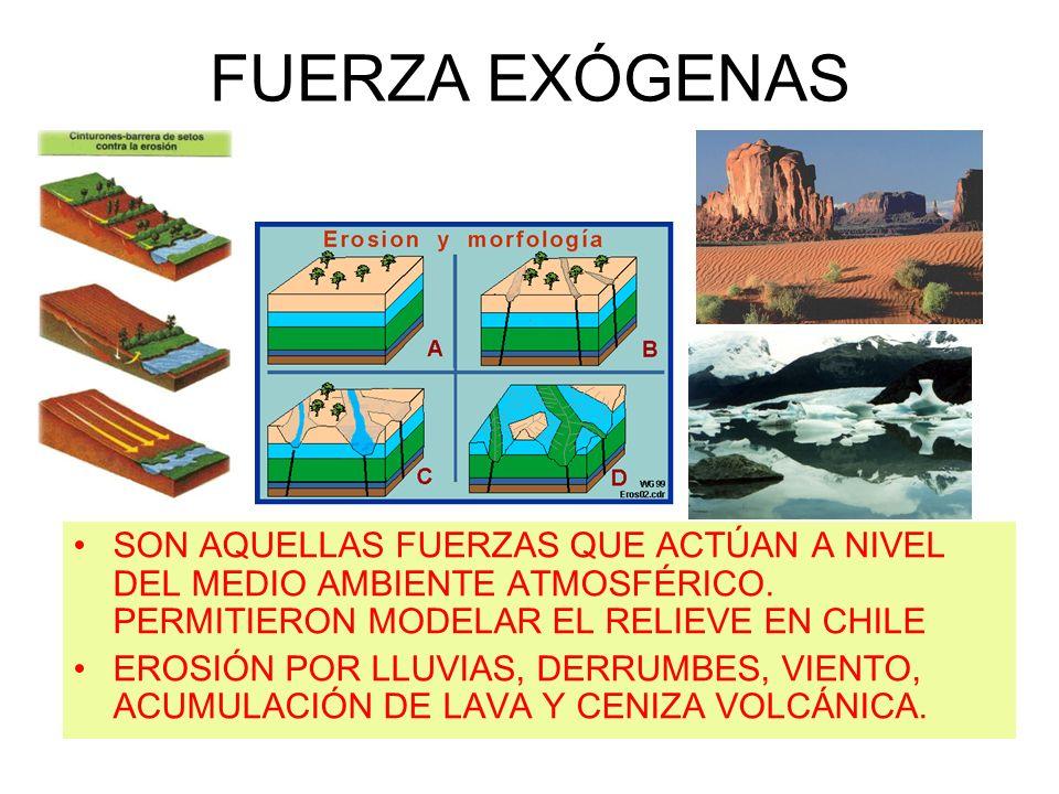 FUERZA EXÓGENASSON AQUELLAS FUERZAS QUE ACTÚAN A NIVEL DEL MEDIO AMBIENTE ATMOSFÉRICO. PERMITIERON MODELAR EL RELIEVE EN CHILE.