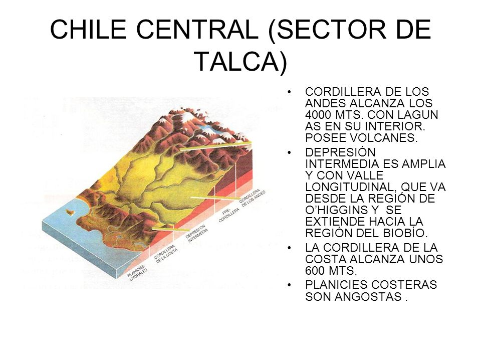 CHILE CENTRAL (SECTOR DE TALCA)