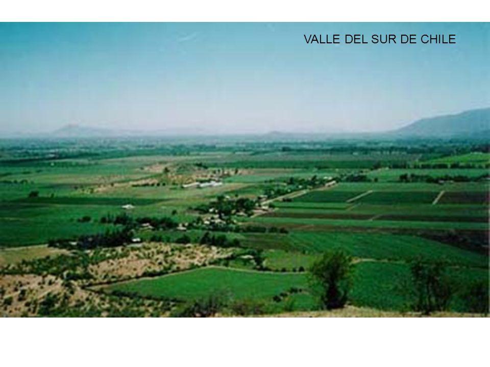 VALLE DEL SUR DE CHILE