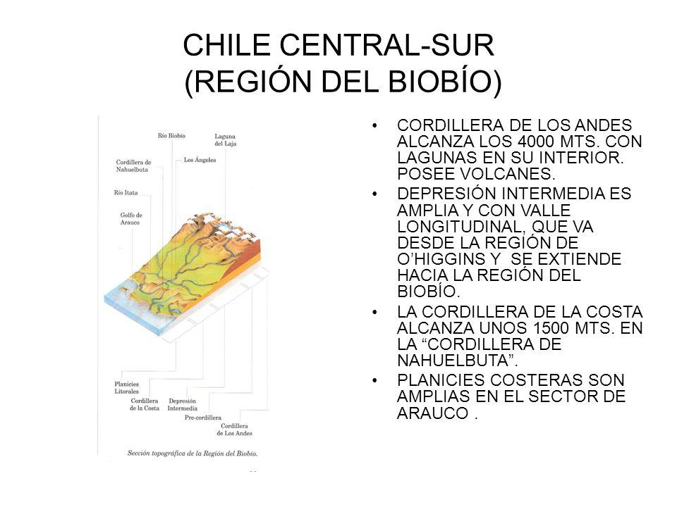 CHILE CENTRAL-SUR (REGIÓN DEL BIOBÍO)
