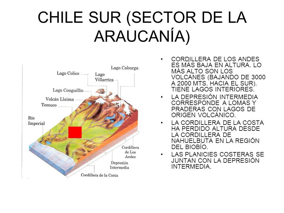 CHILE SUR (SECTOR DE LA ARAUCANÍA)