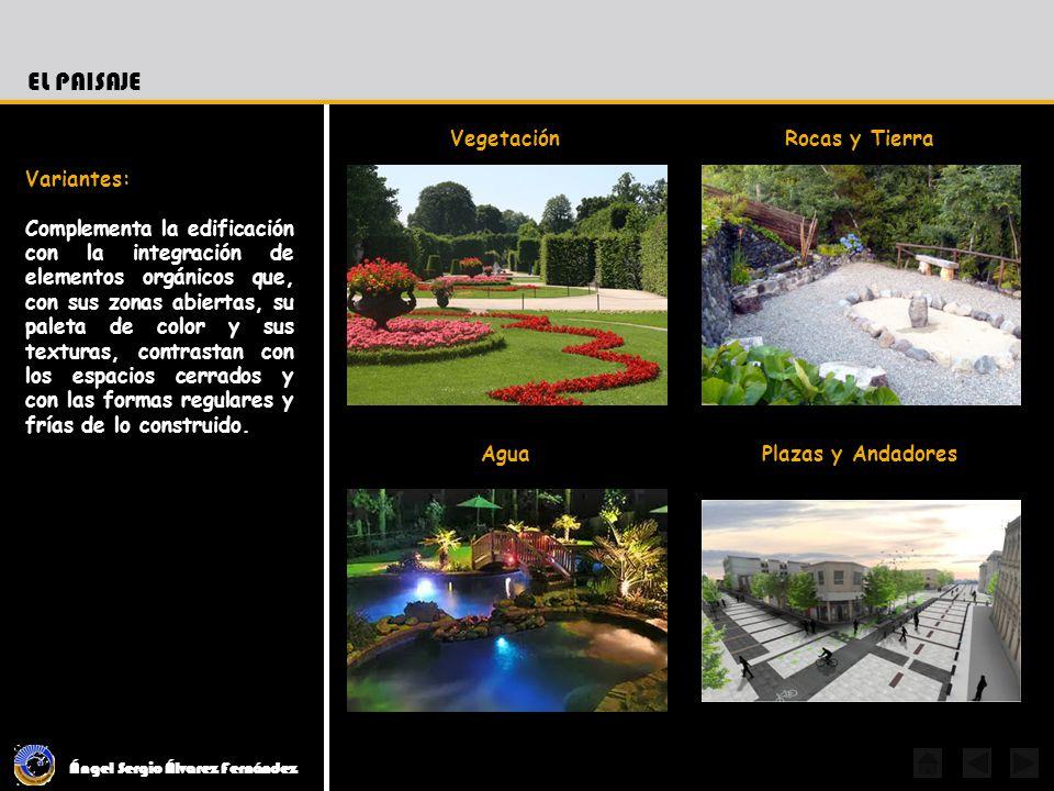 El Paisaje Vegetación Rocas y Tierra Variantes: