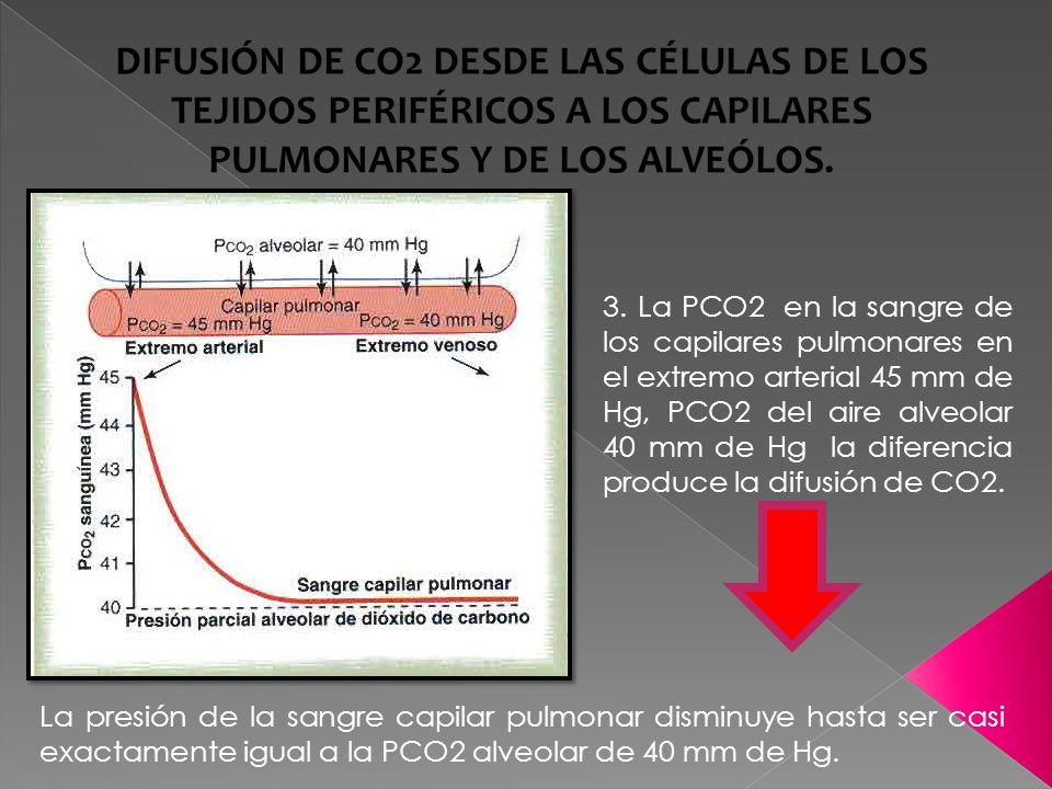 DIFUSIÓN DE CO2 DESDE LAS CÉLULAS DE LOS TEJIDOS PERIFÉRICOS A LOS CAPILARES PULMONARES Y DE LOS ALVEÓLOS.