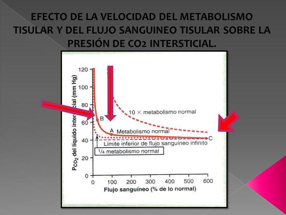 EFECTO DE LA VELOCIDAD DEL METABOLISMO TISULAR Y DEL FLUJO SANGUINEO TISULAR SOBRE LA PRESIÓN DE CO2 INTERSTICIAL.