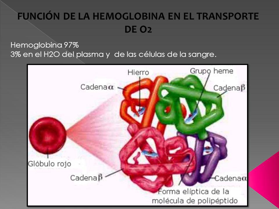 FUNCIÓN DE LA HEMOGLOBINA EN EL TRANSPORTE DE O2